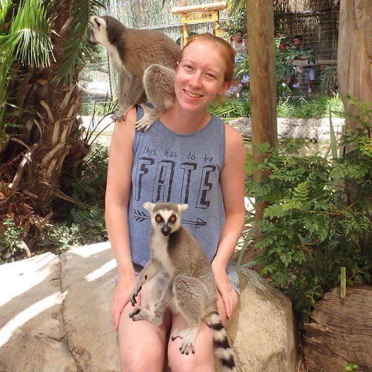 #monkeys #madagascar #lemur #oudtshoorn #cangowildliferanch